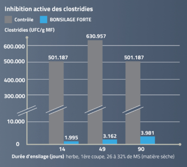 BONSILAGE FORTE inhibe activement les Clostridies.