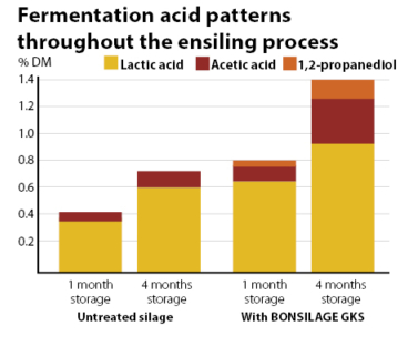 Fermentation profile during ensiling of BONSILAGE GKS treated and untreated silages.