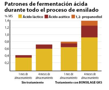 Patrones de fermentación ácida durante todo el proceso de ensilado