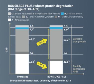 BONSILAGE PLUS reduces protein degradation.