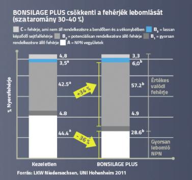 A BONSILAGE PLUS csökkenti a fehérjék bomlását