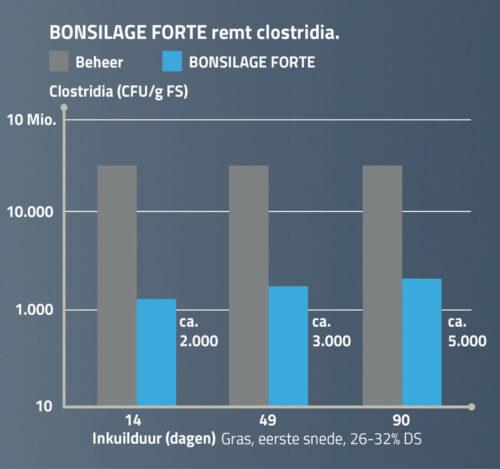 BONSILAGE FORTE remt clostridia.