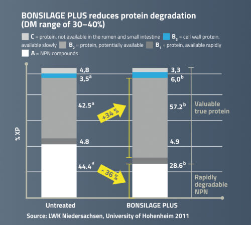 BONSILAGE PLUS reduces protein degradation.