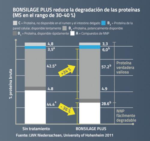 BONSILAGE PLUS reduce la degradación de las proteínas
