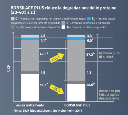 BONSILAGE PLUS ostacola la degradazione delle proteine.