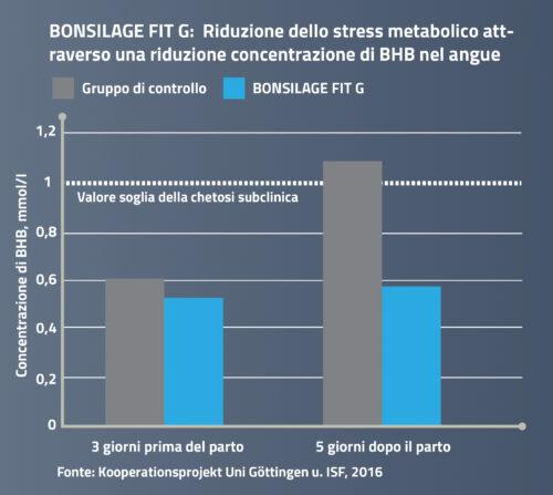 BONSILAGE FIT G: Riduzione dello stress metabolico attraverso una riduzione concentrazione di BHB nel angue