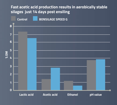 Fast production of acetic acid