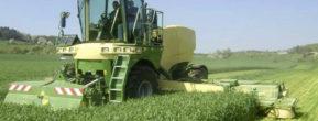 Ernte Getreidesilage